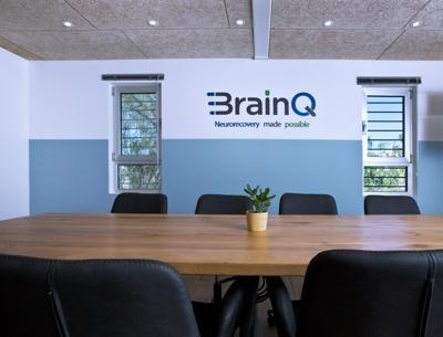 BrainQ